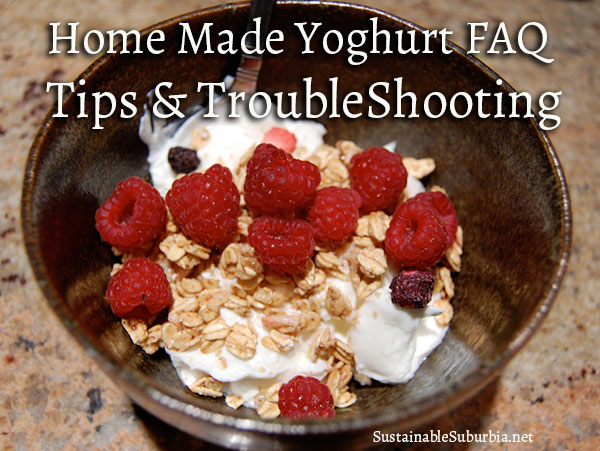 Home made Yoghurt FAQ, Tips & Troubleshooting | SustainableSuburbia.net