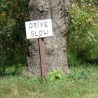 "Hand made sign saying ""drive slow"" in front of a tree."