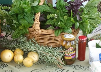 A basket of bunches of basil on a table with few fruit, sprigs of rosemary, and bottled goods in front of the basket.