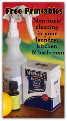 Free Printables: Non-toxic cleaning in your laundry, kitchen & bathroom | SustainableSuburbia.net