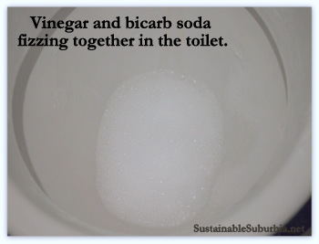 Vinegar and bicarb soda fizzing together in the toilet, making a foam