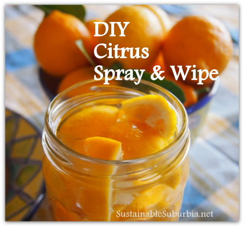 How to make DIY Citrus Spray 'n' Wipe | SustainableSuburbia.net