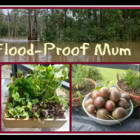 Flood Proof Mum | SustainableSuburbia.net