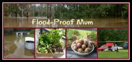 Flood Proof Mum | SustainableSuburbia.net